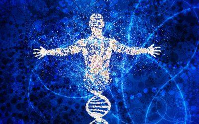 Diagnóstico con Bioscanner Cuántico